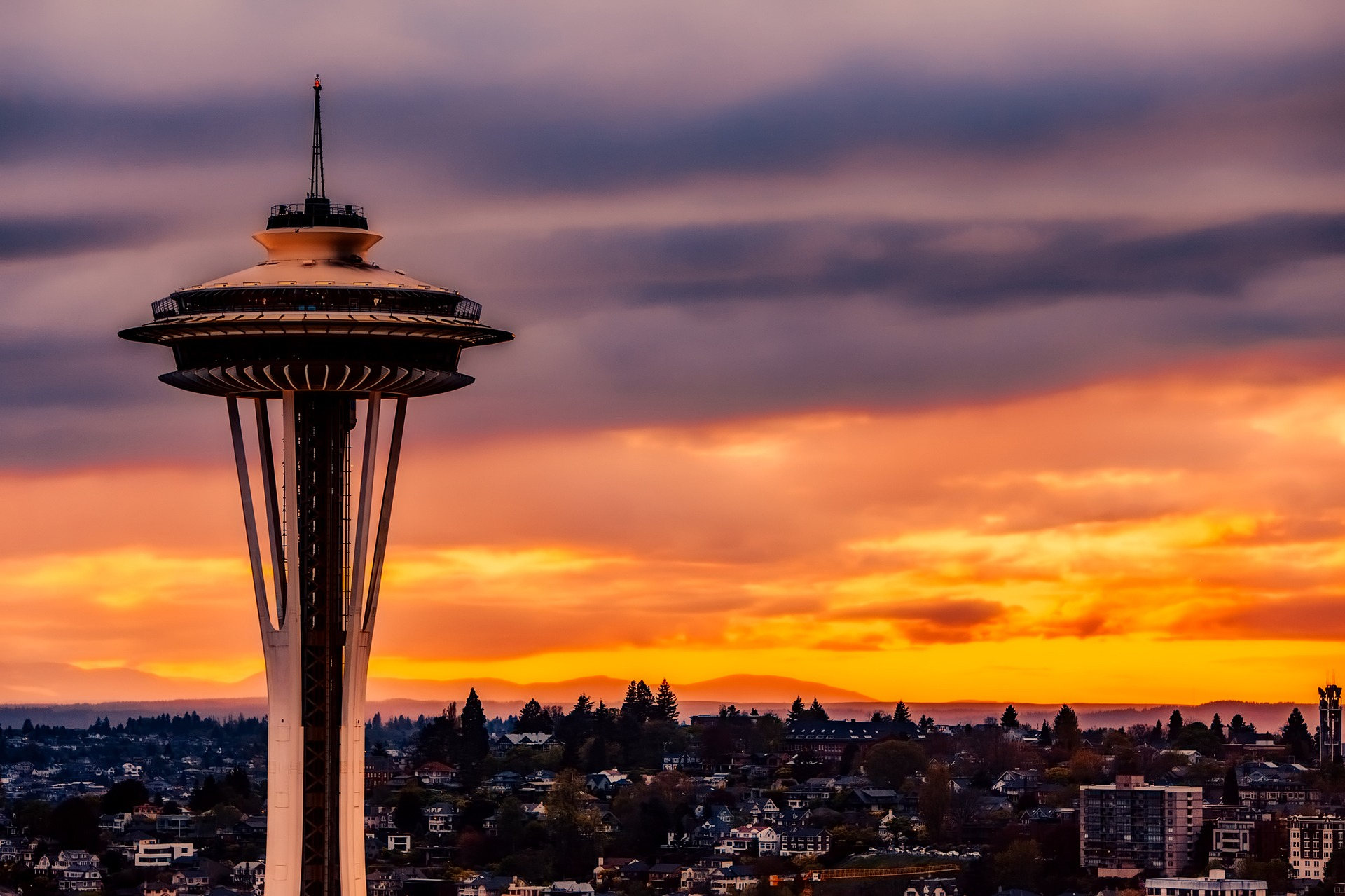 SEATTLE SCREENWRITING AWARDS HONORS COMPETITION FILMFREEWAY WITHOUTABOX